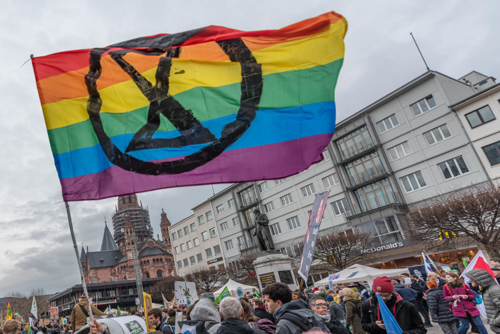 Extinction Rebellion Flagge Mainz